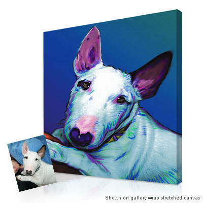 Personalized Pop Art Photo | Pet glo� portrait